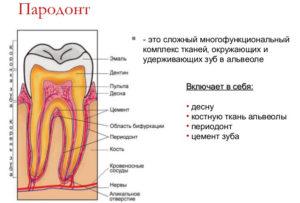 vektor-terapiya_01